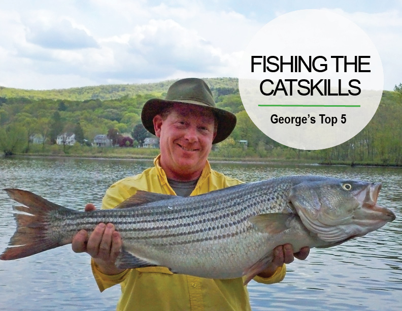 Catskill Mountains Fishing Recommendations photo