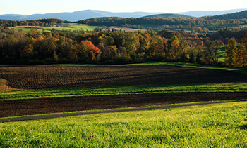 Ancram NY Farms and Markets