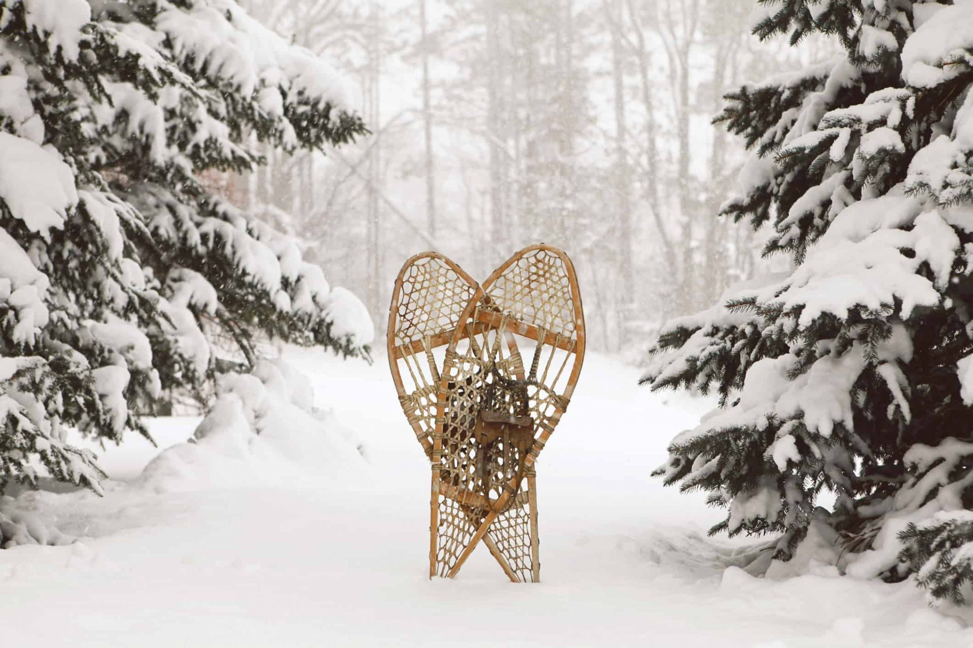 Snowshoe The Catskills | Where To Rent Snowshoes photo