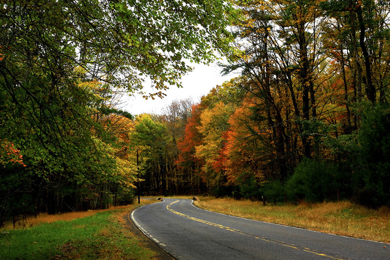 The Catskills Real Estate & Homes For Sale, NY